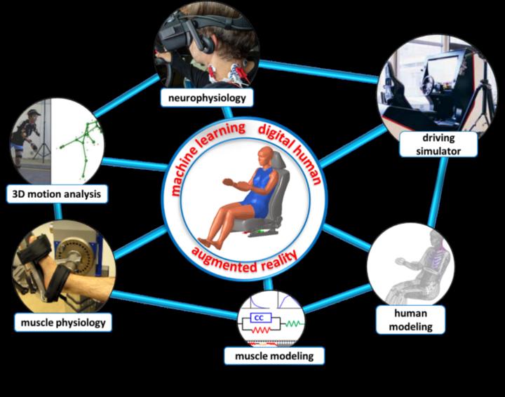 Netzwerk von Methoden und Kompetenzen zur Verbesserung der Mensch-Maschine- Interaktion in Driver-in-the-Loop-Simulationen zur Bewertung des Verletzungsrisikos beim autono- men Fahren.